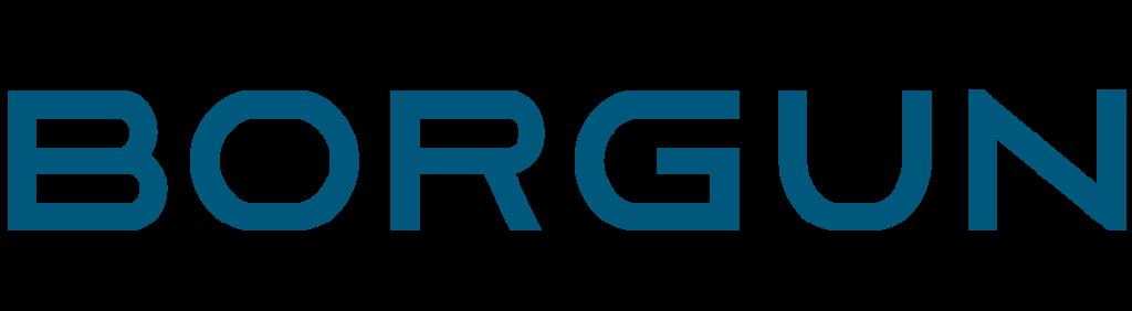 borgun_logo